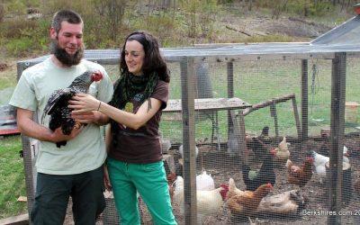 Olsen Farm: In the News